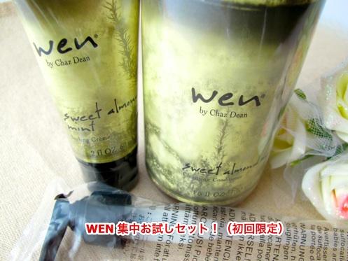 wen3-otameshisetx500